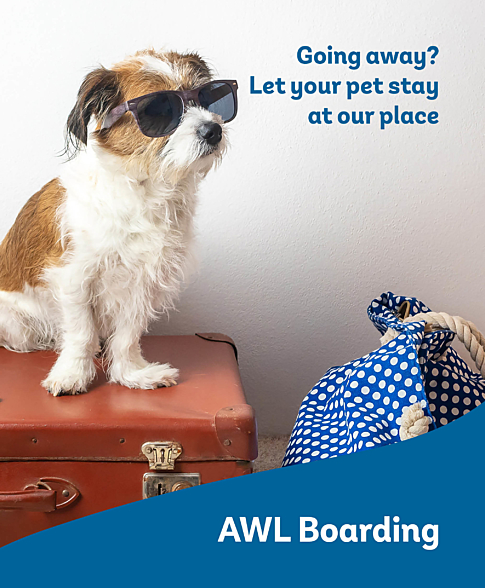 AWL Website Home page CTA Boarding